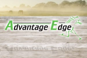 Advantage Edge had an awesome weekend at Mohegan Sun Pocono stakes with 4 wins and a close second!