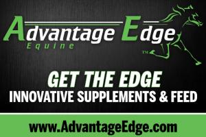Advantage Edge At Black Book Standardbred Sale